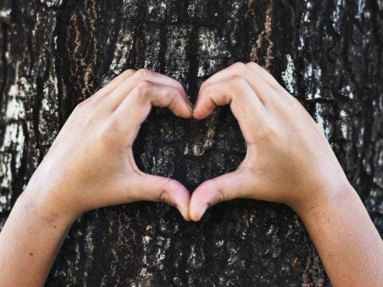 怎麼教育孩子要有同理心?同理心怎麼教?同理心是什麼?同理心的定義