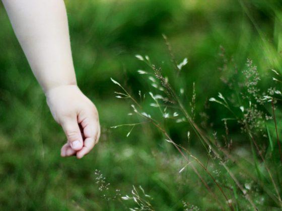「我要穿綠色的!」談幼兒不合理的情緒,爸爸媽媽也經常遇到幼兒蠻不講理的時候,這時候可以怎麼處理或是跟孩子溝通呢?